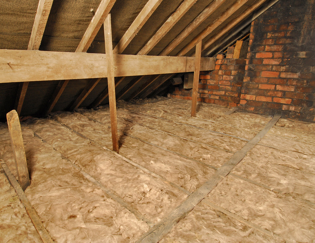 Showing loft insulation between joists.