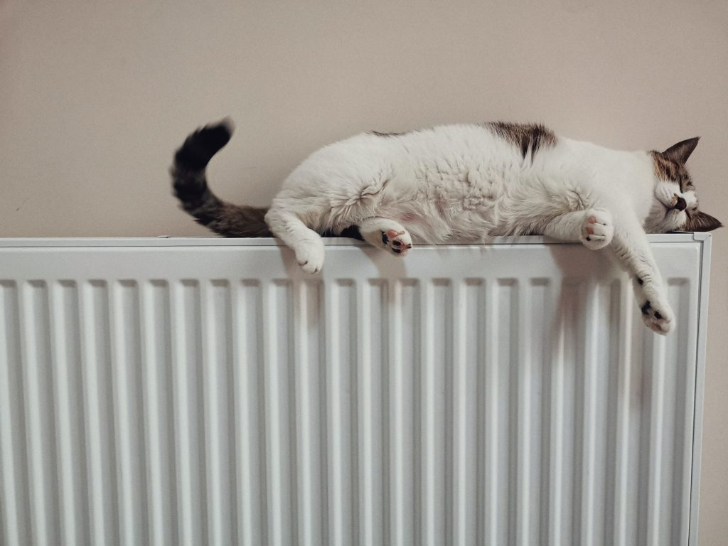 Funny picture of an obstruction to central heating control.